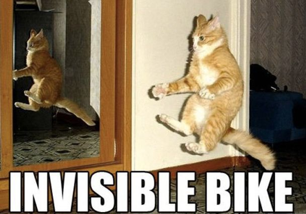 We can't know if this cat is riding an invisible bike or not.