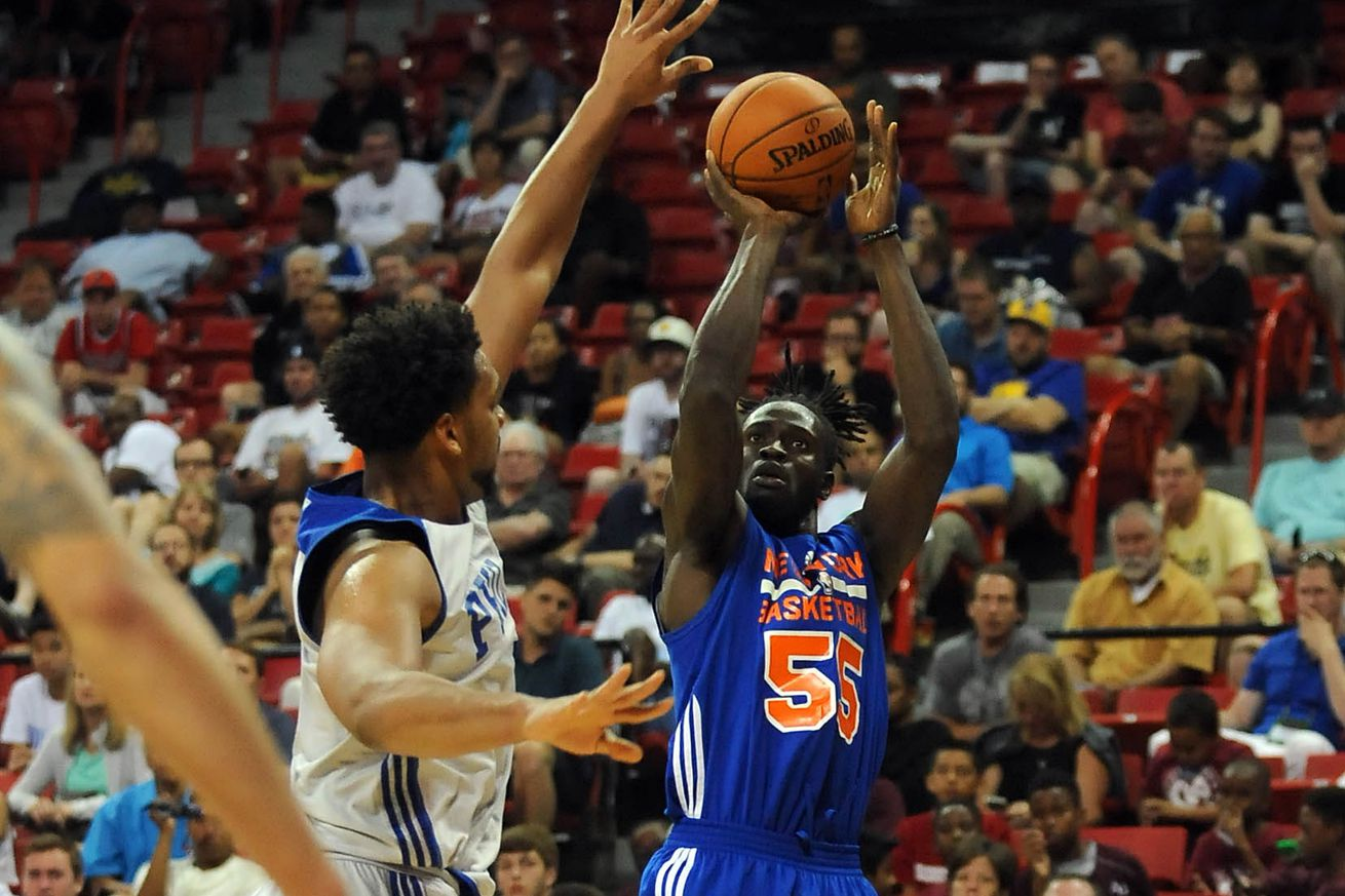Knicks re-sign Vujacic, sign Ndour