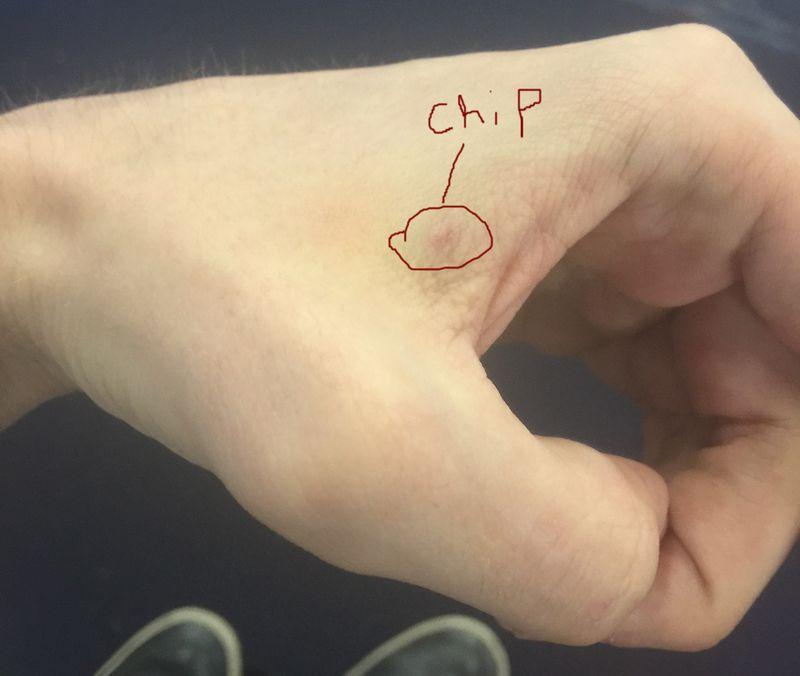чип в руке