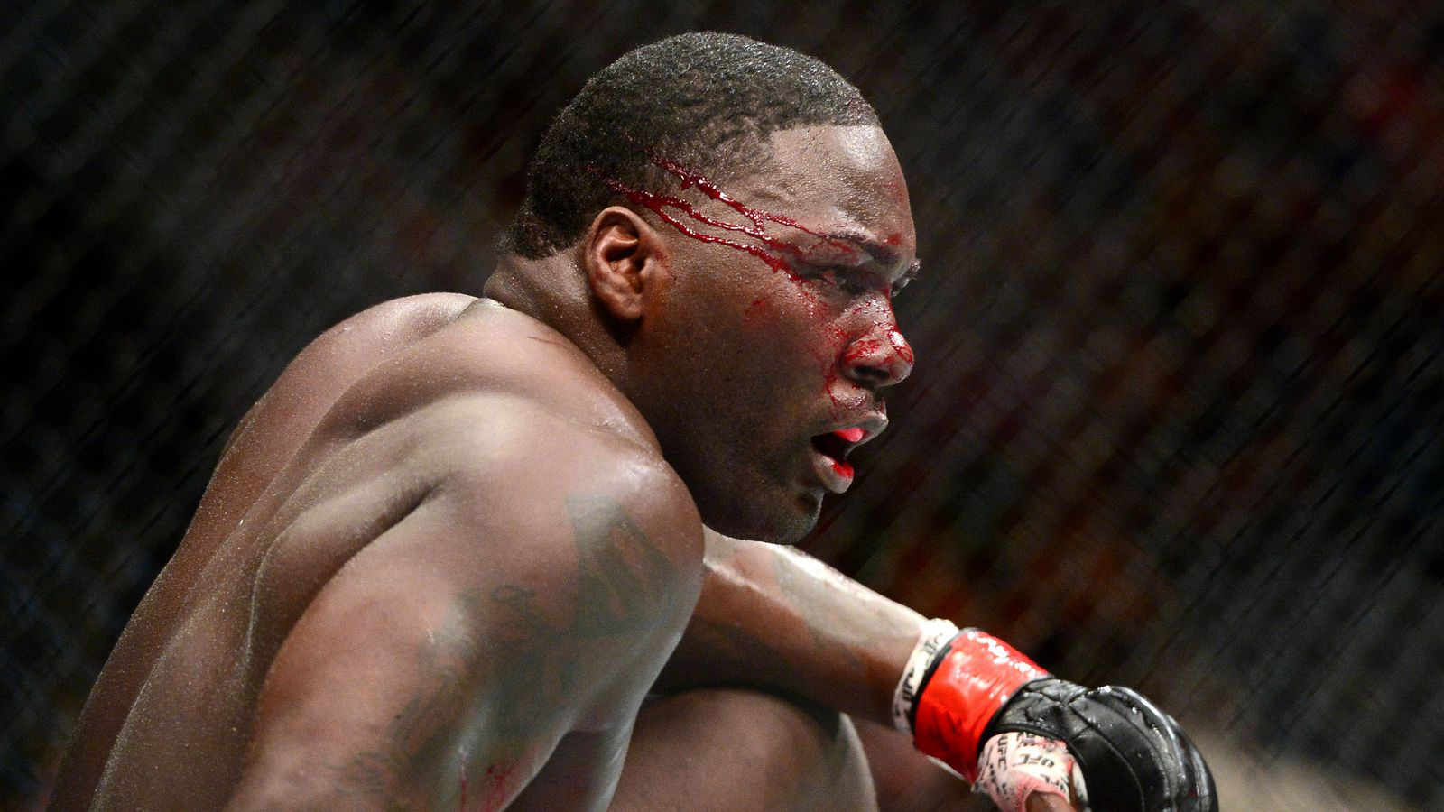 UFC 187: Johnson vs. Cormier – Winners and losers - Bloody Elbow