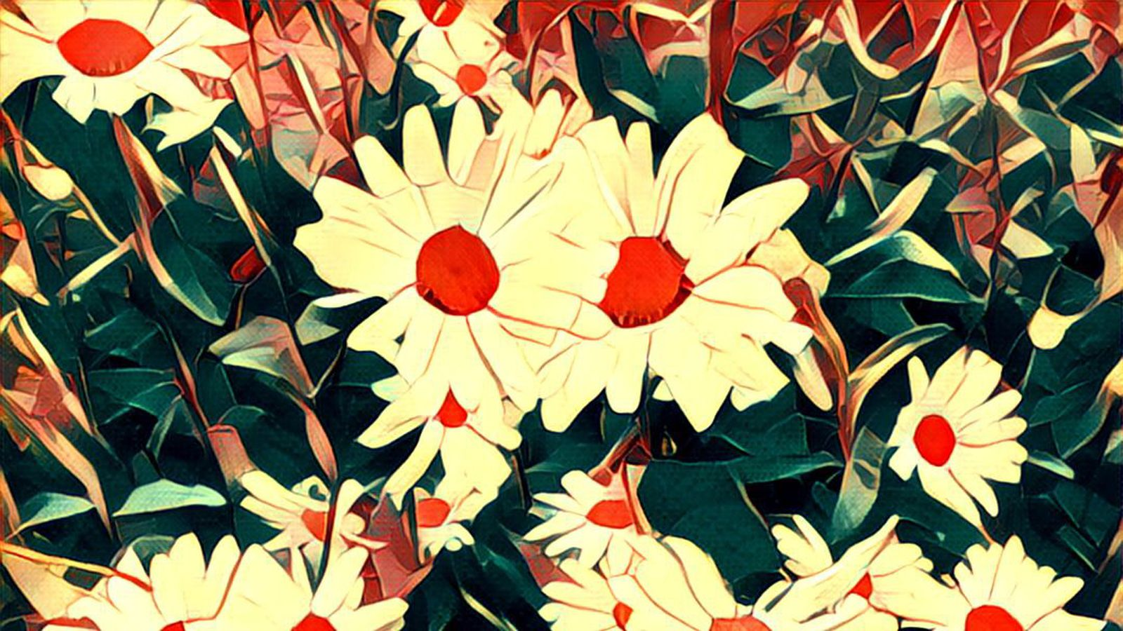 Prisma is now out on Android | The Verge