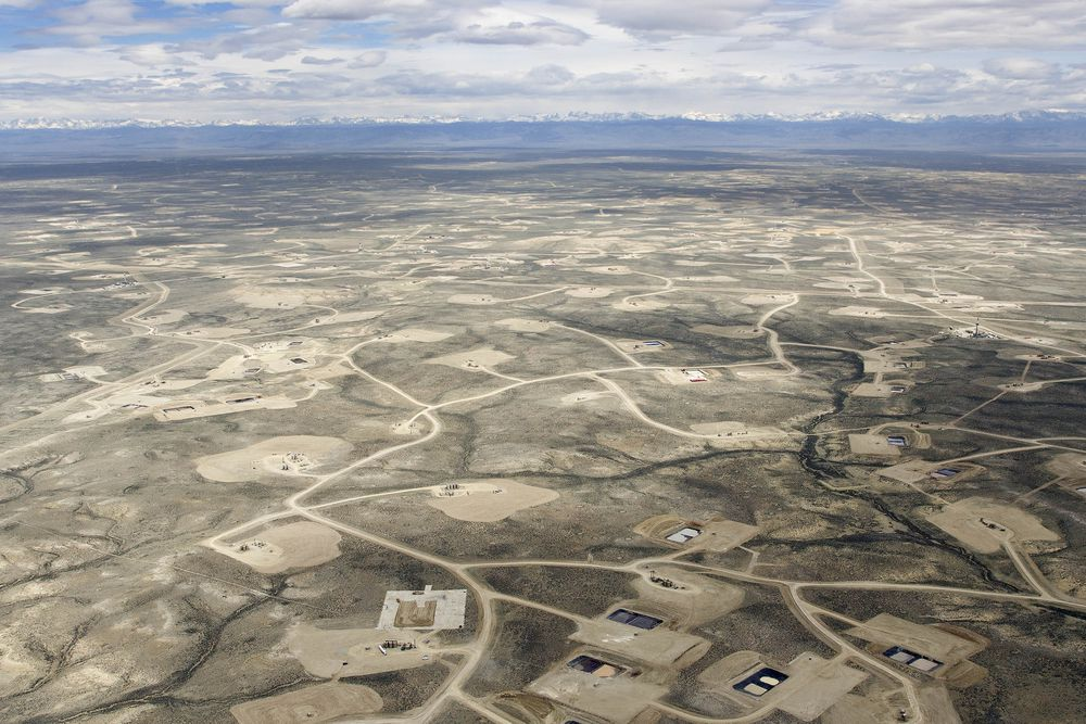 oil and gas destroy ecosystems