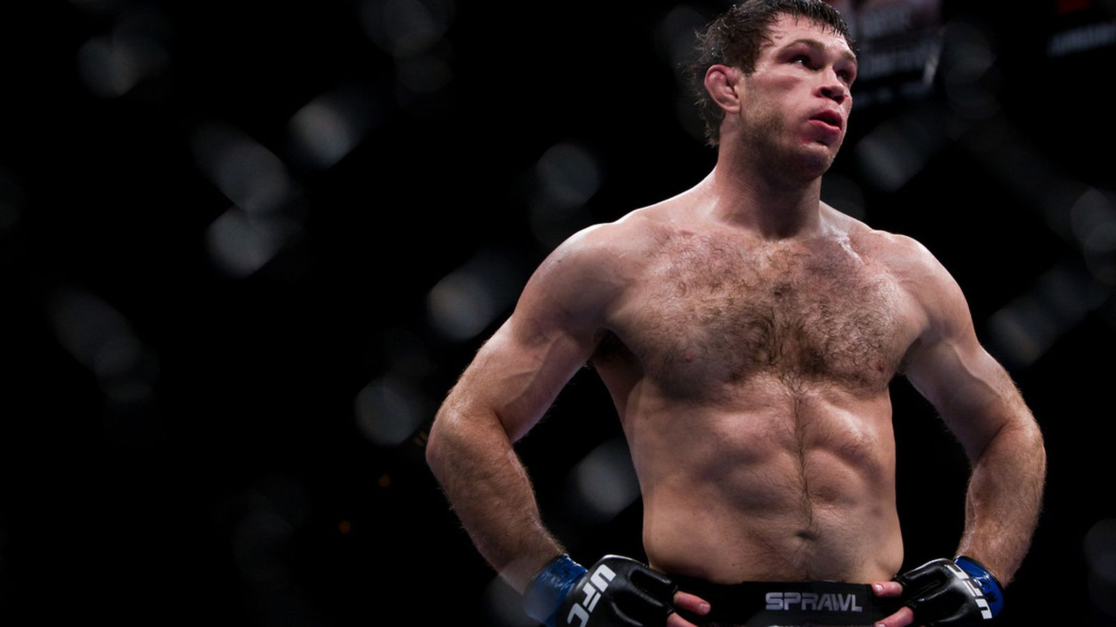 forrest griffin how tall