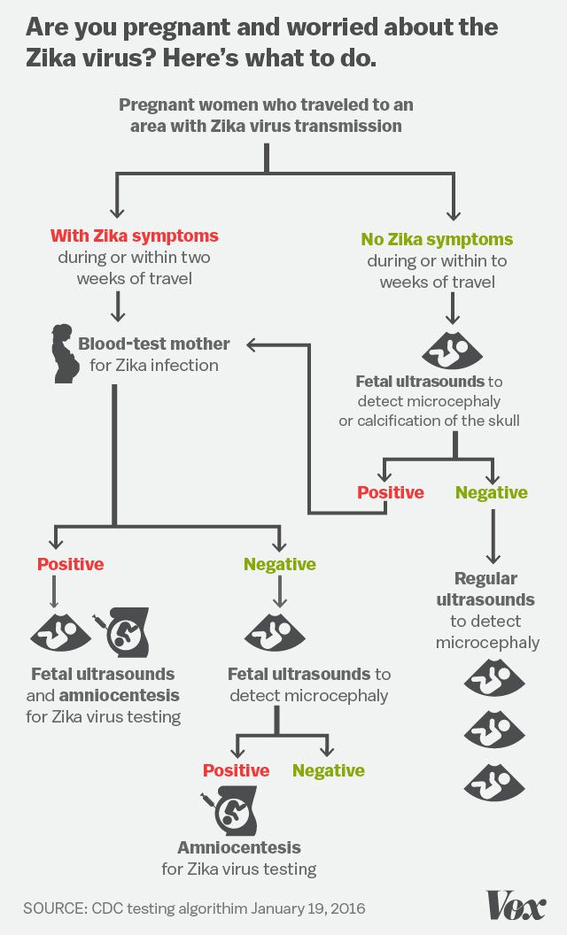 Pregnant and Worried about the Zika Virus Chart