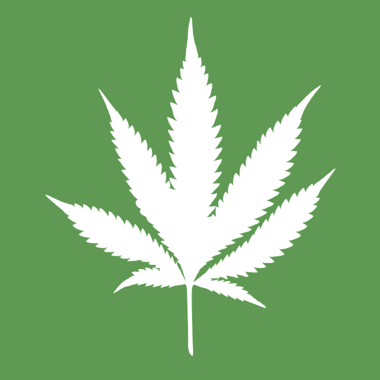 sports in the age of cannabis