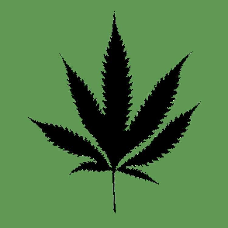 Resultado de imagen de cannabis