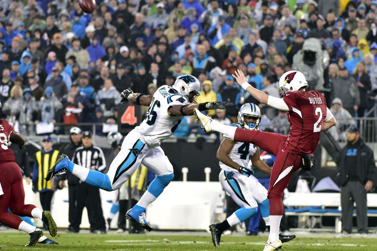 Cheap NFL Jerseys NFL - TE Brandon Williams is Off the PUP List - Cat Scratch Reader