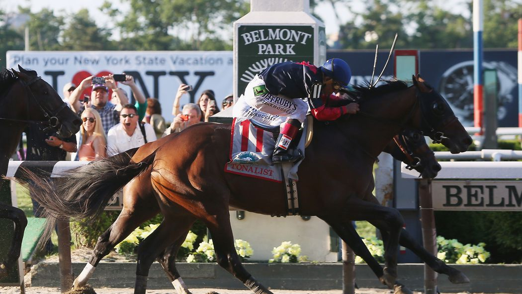 live odds belmont stakes go sports team