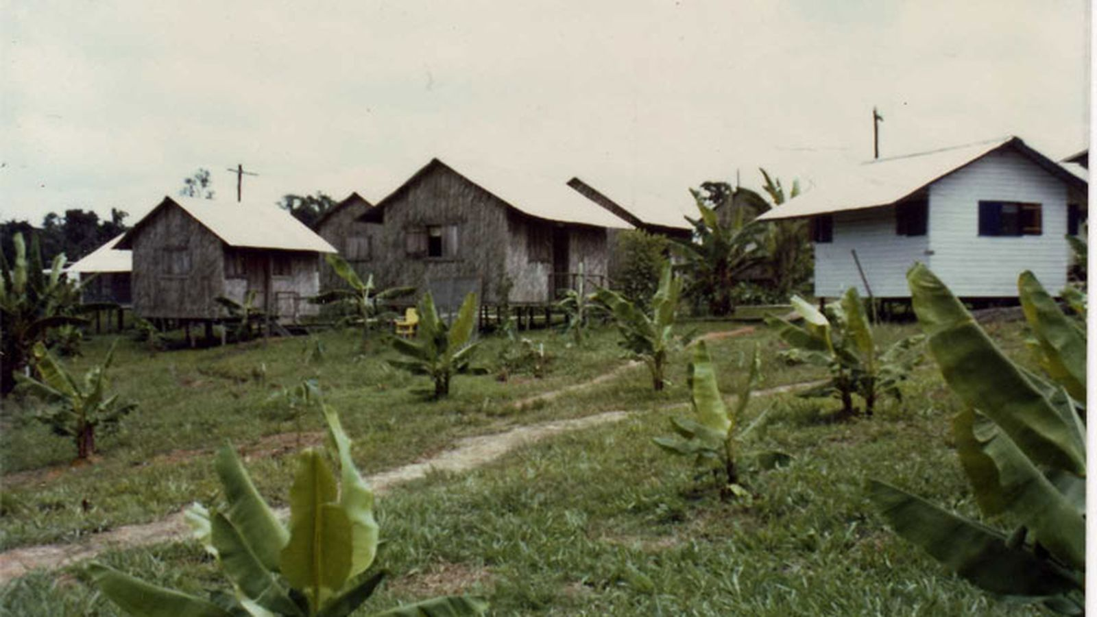 Remembering The Tragedy Of Jonestown 35 Years Ago Today
