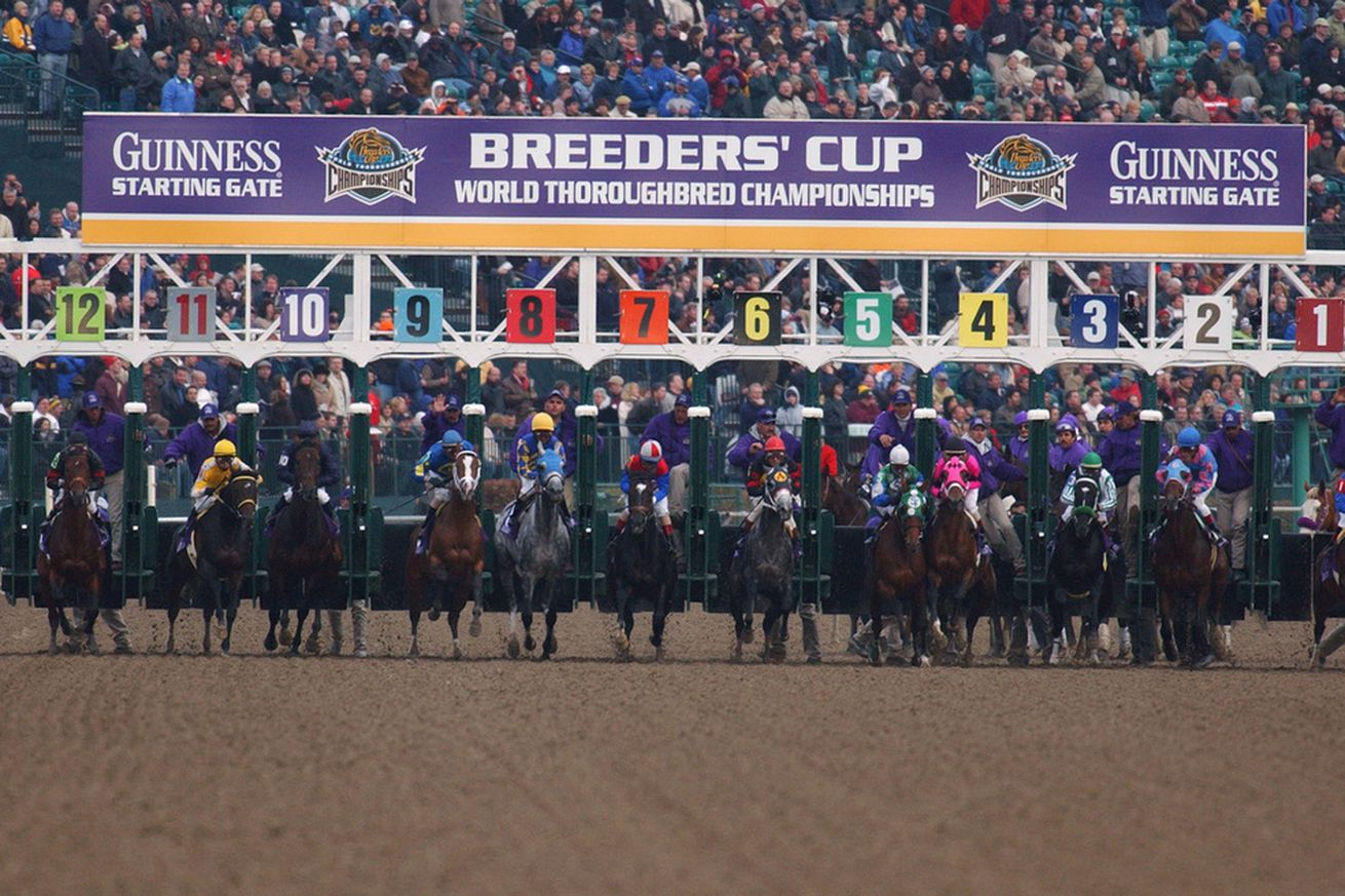 breeders cup odds nfl futures odds