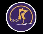 Daily Norseman Logo