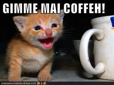 gimme myy coffee!