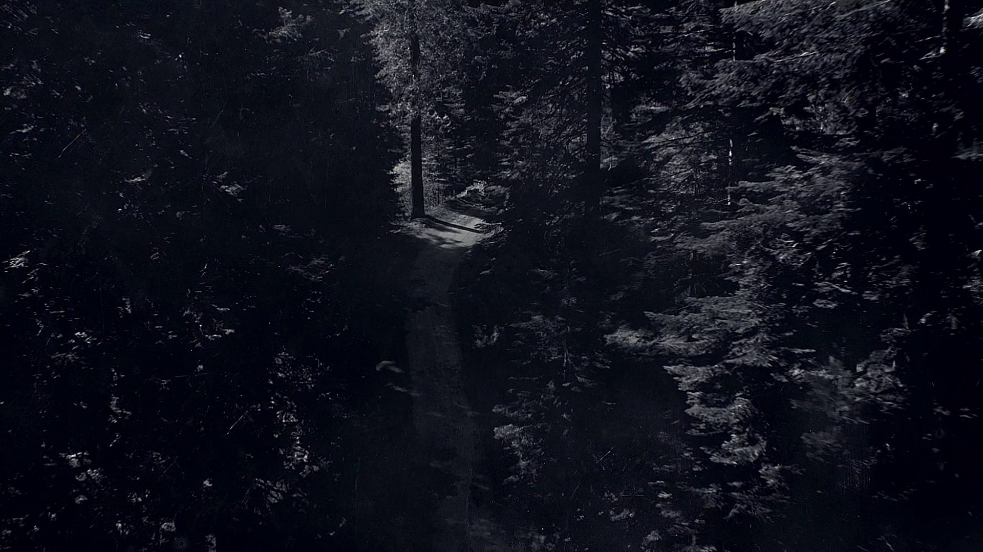 The title sequence's final shot
