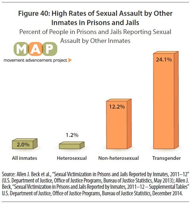 Homosexuality statistics in prison